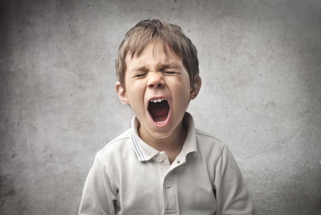 «فلسفه برای کودکان» و کنترل پرخاشگری (بخش دوم)