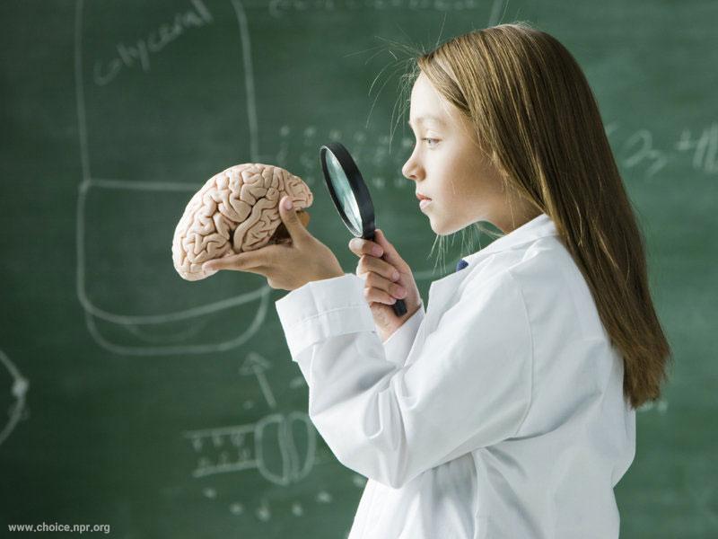 مغز ما واژهها را تصویر میبیند