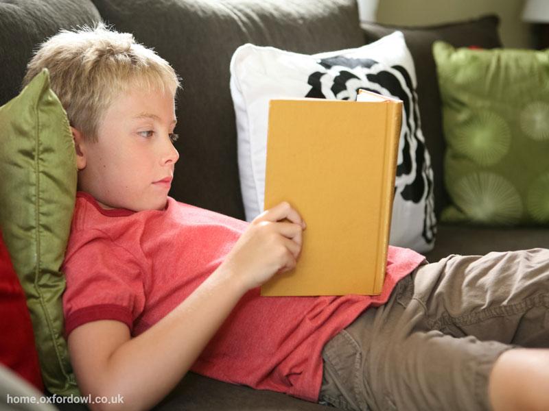 عصبشناسی خواندن مقدمهای بر تأثیر قصه و ادبیات داستانی بر مغز کودکان
