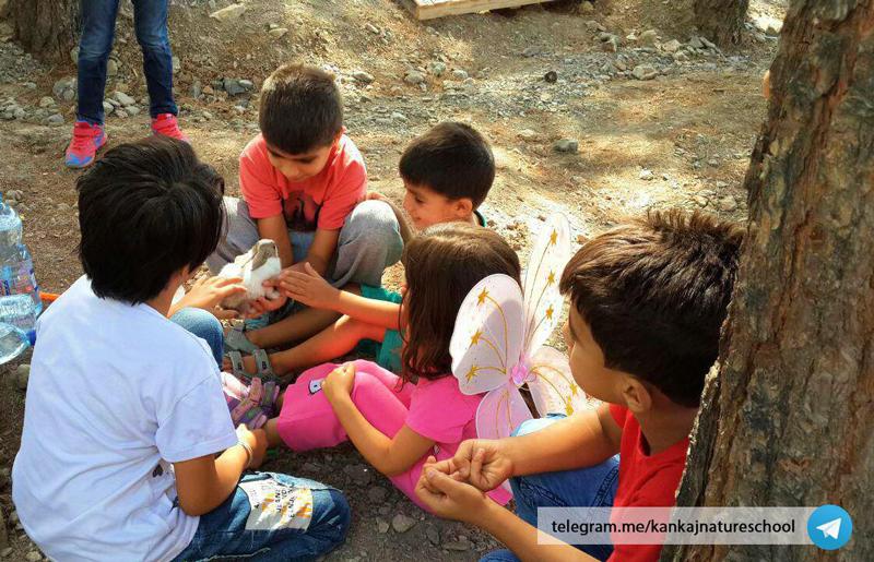 آموزش حیوان دوستی به کودکان