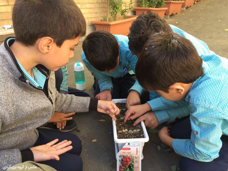 باغچه-مزرعهای برای فضای مدرسه