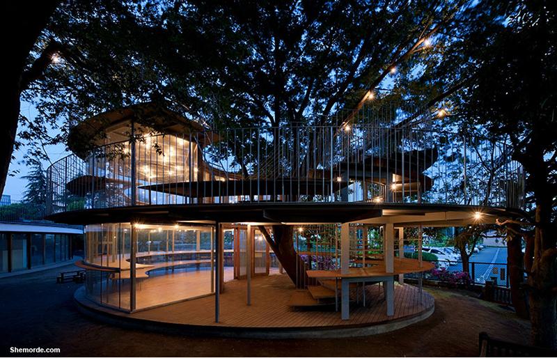 مهدکودک ژاپنی ساختهشده دور یک درخت با داستانی افسانهای!