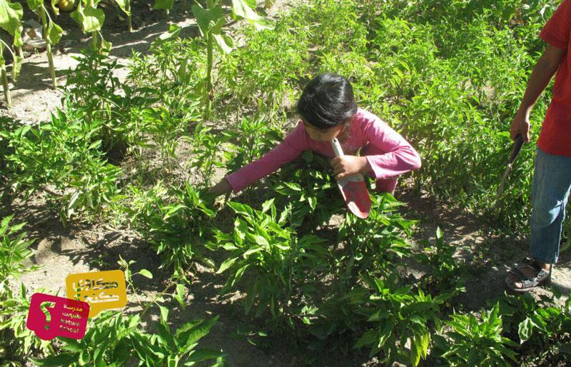 چگونه به کودکان خود مراقبت از محیط زیست را آموزش دهیم؟