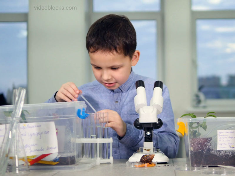لذت یادگیری در کنار تجربههای علمی