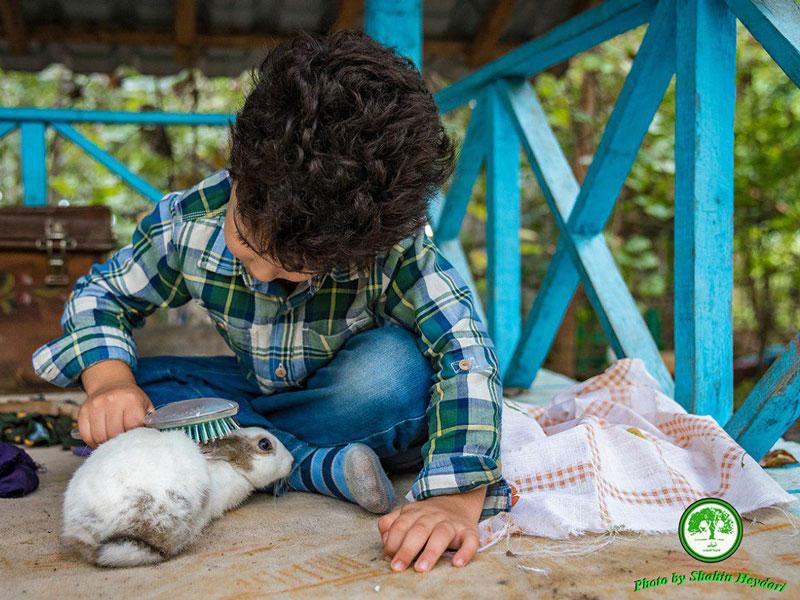 درسهایی از مدرسه طبیعت، حیوانات مدرسه طبیعت