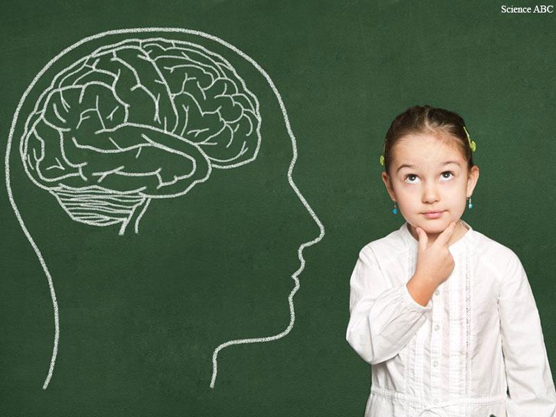 بررسی نظریه ویگوتسکی از دیدگاه روان شناسی و ارتباط آن با مبانی نظری آموزش فلسفه به کودکان- بخش پایانی